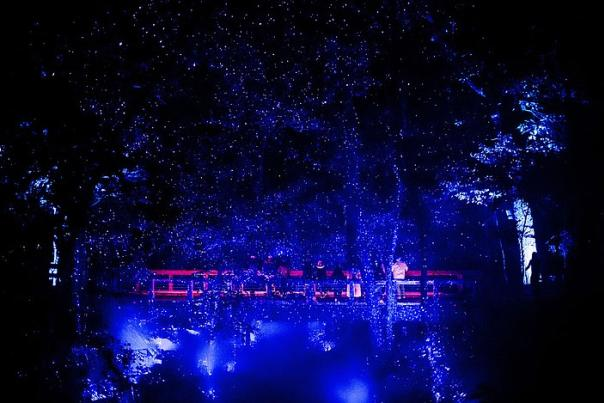 Glowing Again: North Forest Lights back at Crystal Bridges