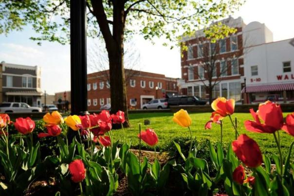 Bentonville Arkansas: Big City Vibe, Small Town Soul