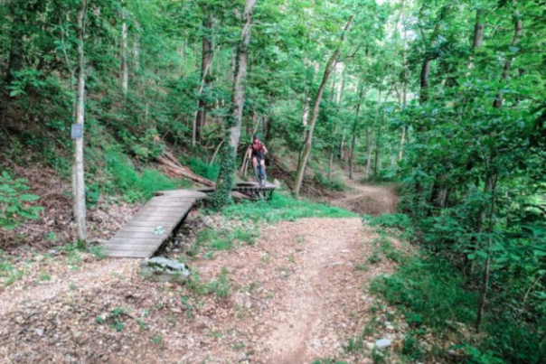 There's An Unexpected Playground Hiding In The Middle Of This Arkansas Forest That The Whole Family Will Love