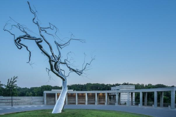 """Yield"" a stainless steel tree located by the entrance to Crystal Bridges Museum of American Art in Bentonville Arkansas"