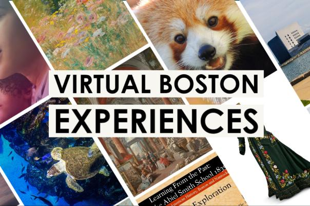 Boston Virtual Experiences