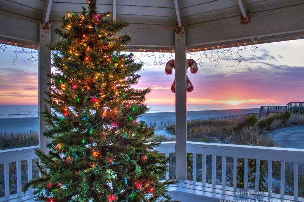 Christmas tree HB IMG_9203