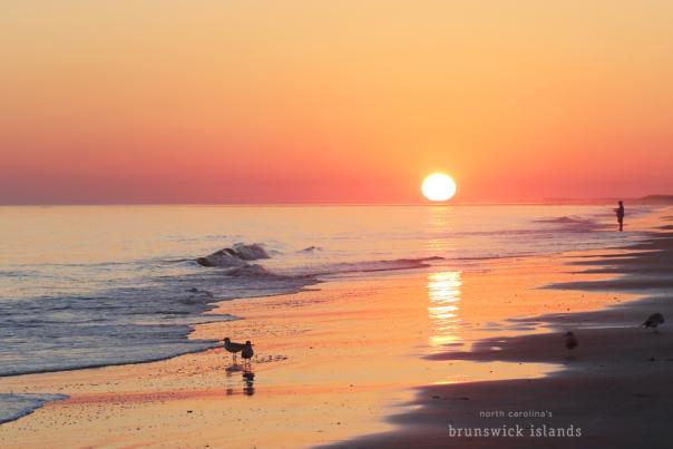 IMG_8399 sunset