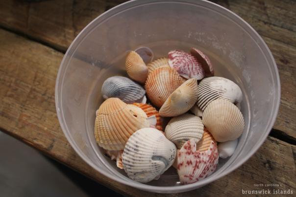 Coastal Crafts Blog