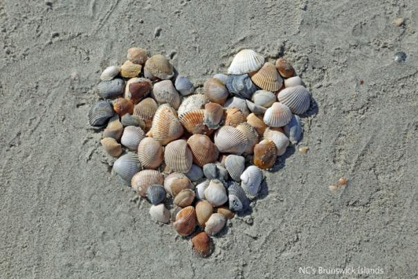 shell heart for facebook