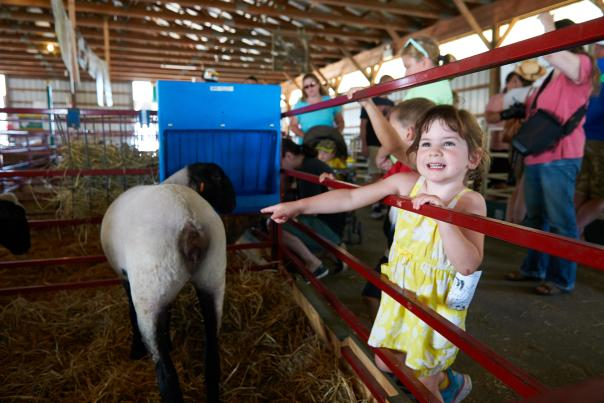 Families enjoy the 4-H Club animals on display at the Middletown Grange Fair.