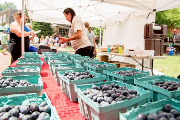 Celebrate one of summer's favorite fruits with a weekend full of treats and swinging country music during the Bluegrass & Blueberries Festival at Peddler's Village! Enjoy live bluegrass and folk tunes, children's activities and some of the finest blueberry foods.