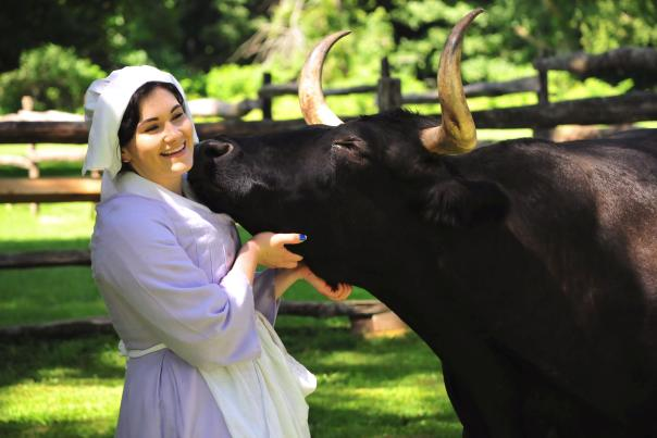 Bill the Ox at Pennsbury Manor