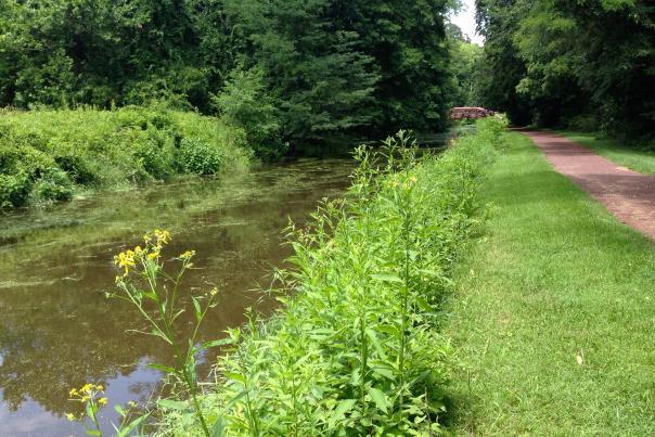 Delaware Canal Towpath Yardley Elisa Baxt