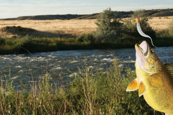 Top 5 Fishing Spot Secrets