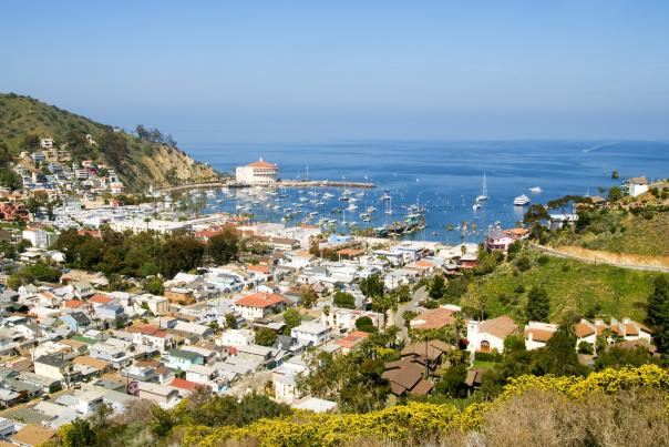 Scenic drive view of Avalon and harbor on Catalina Island