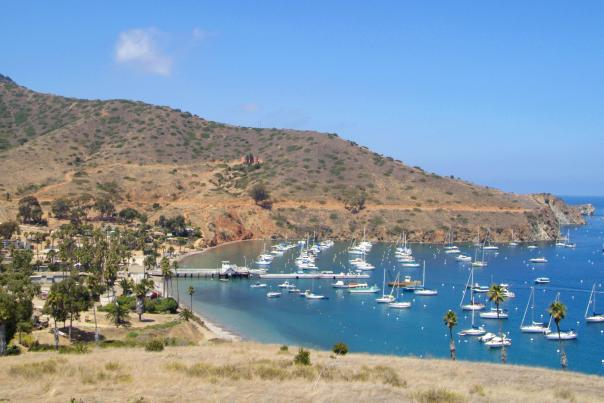 Aerial view of boats on the bay at Two Harbors on Catalina Island