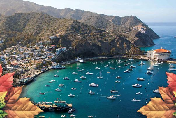 Thanksgiving on Catalina