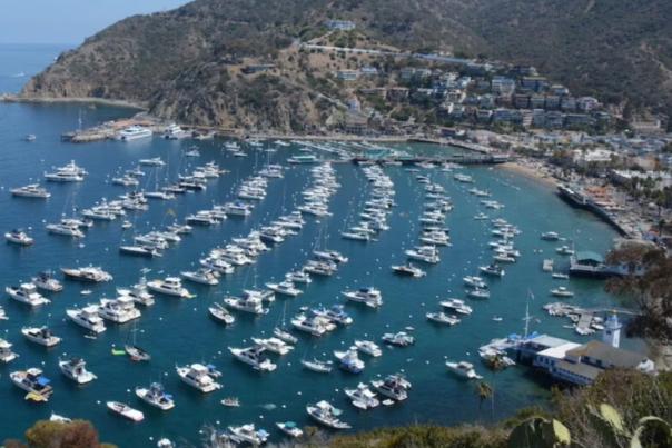 Travel Awaits: 10 Fantastic Things To Do On Catalina Island