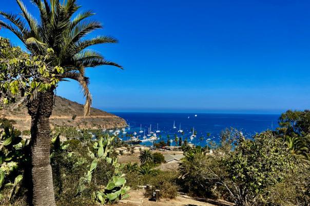 Two Harbors Catalina Island