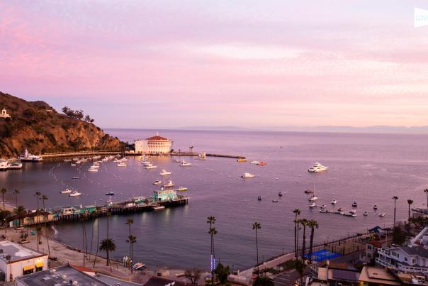 Love Catalina Webcam