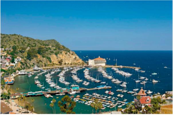 Catalina Island - Forbes