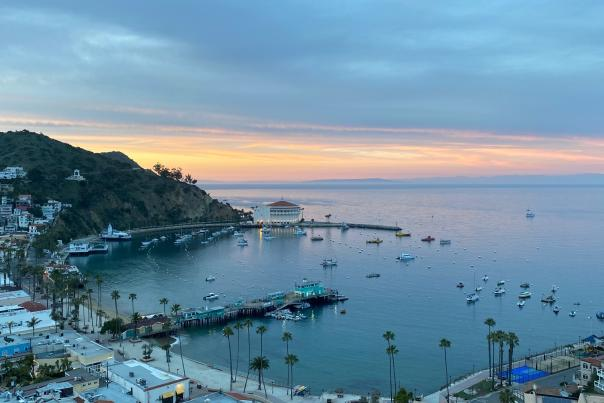 Video Thumbnail - vimeo - No Man is An Island - Love Catalina