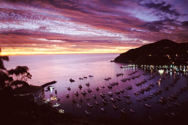 Purple Harbor Sunrise