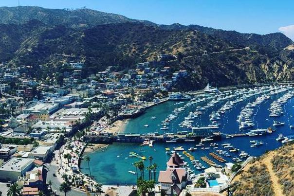 how-to-plan-a-meeting-on-catalina-island