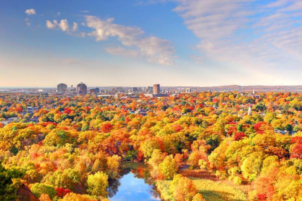 New Haven - Fall Foliage