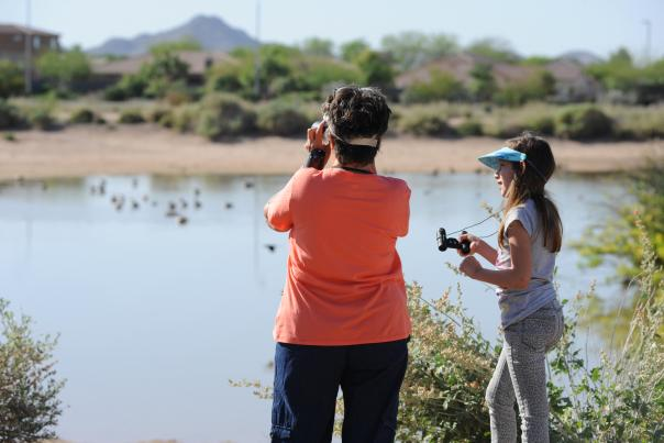 Birding at Veterans Oasis Park