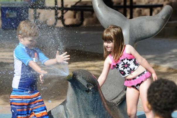 Desert Breeze Spray Animals