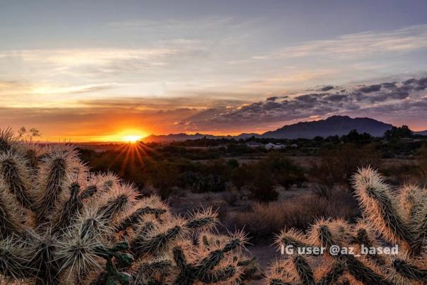 Veterans Oasis Park at Sunrise by IG user @az_based