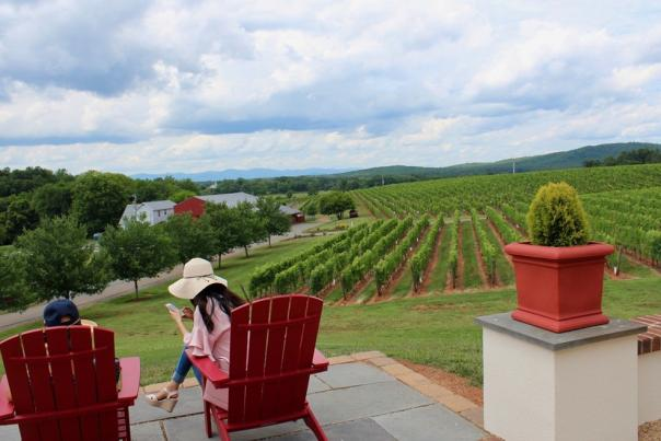 Couple enjoying the view at Barboursville Vineyard