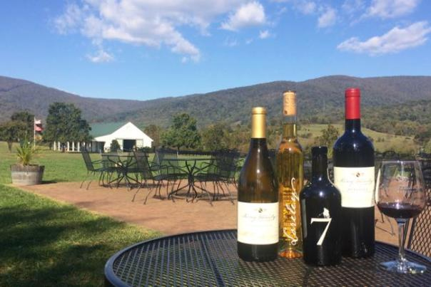 Wine bottles and the mountain view at King Family Vineyards