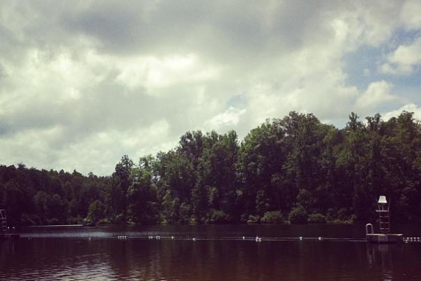 Rachael Palm Walnut Creek