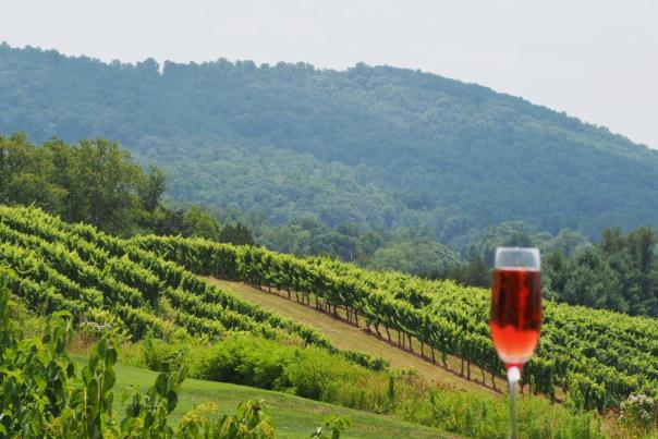 Glass of sparkling wine with mountain view in background