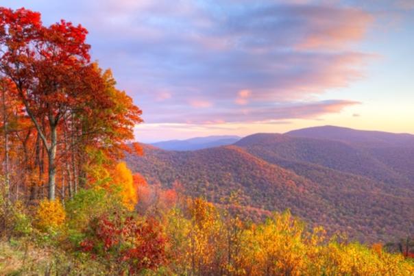 Shenandoah National Park in Fall -