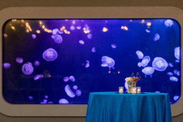 Tn Aquarium_Event Space_PC Dan Henry