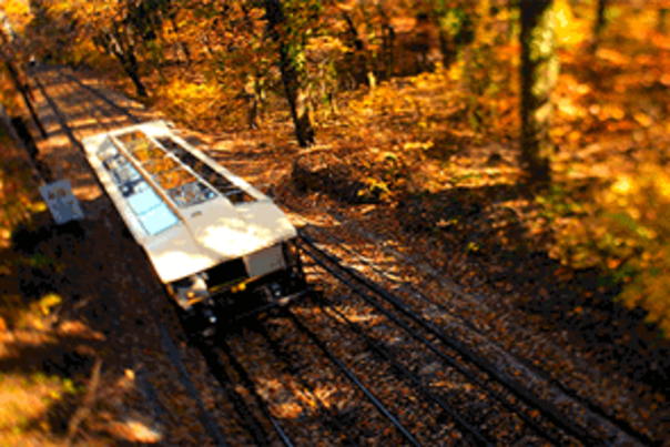 Fall Colors Incline