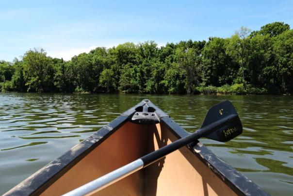 Tennessee River Paddling