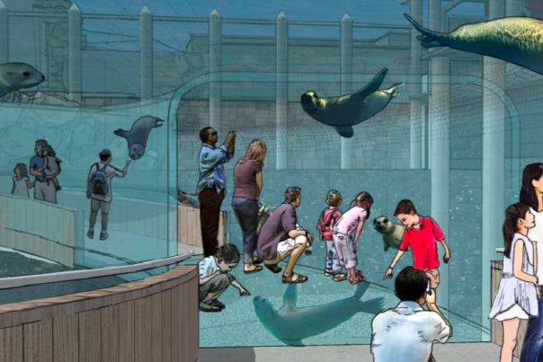 Adventure Cove Rendering - Columbus Zoo and Aquarium