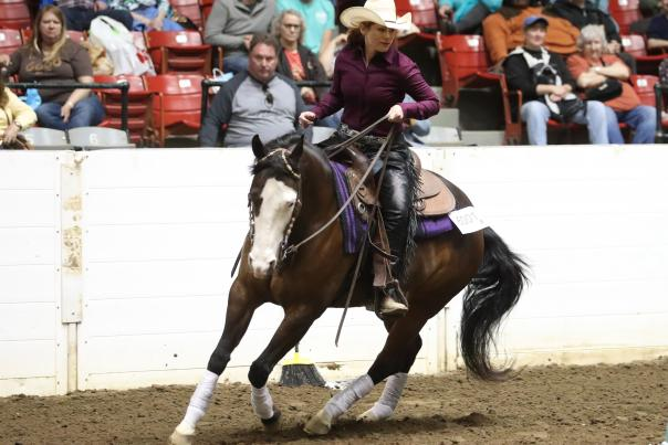 Woman riding horse in front of audience at Equine Affaire
