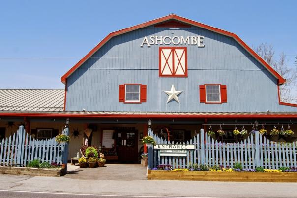Ashcombe-blog