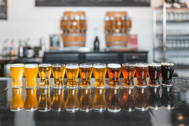 Draft beer in glasses lined up at Desperate Times Brewery
