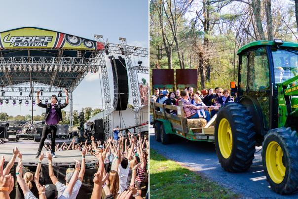 Festivals Farms Blog