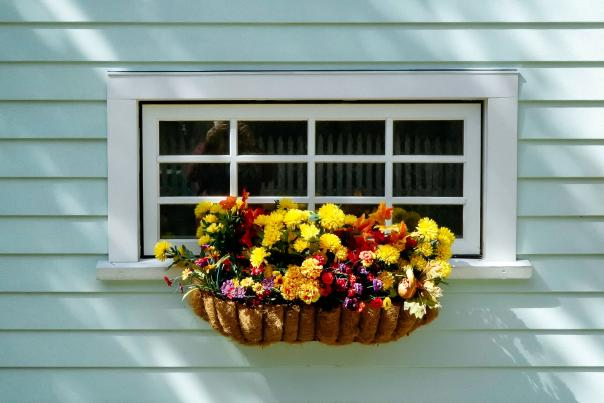 Window Box from Unsplash