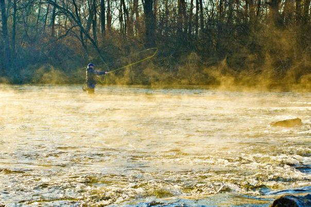 Man Fly Fishing in Cumberland Valley
