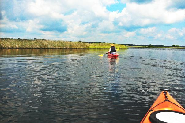 Tomoka State Park Near Daytona Beach offers activity-filled  escapes