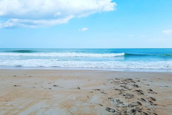 Surf the Waves in Ormond Beach
