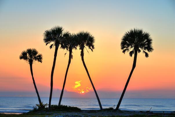 Discover why Daytona Beach is the Festival Capital of Florida