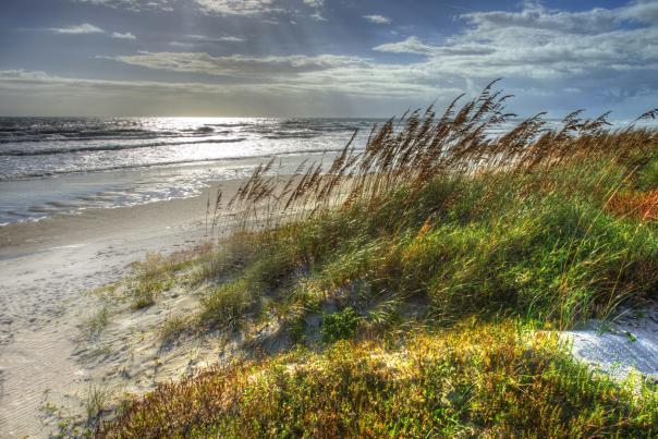 Fall Beach Shot