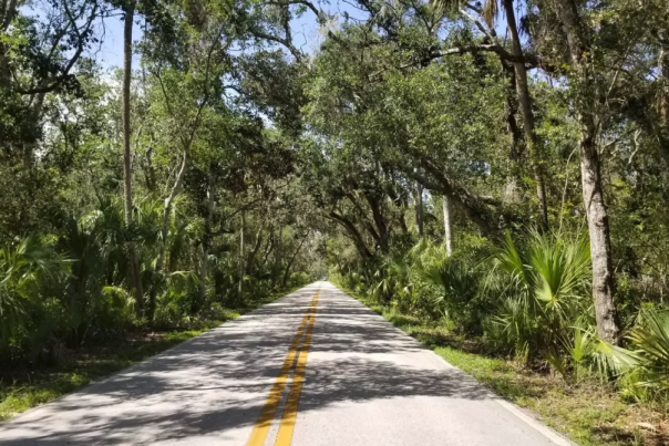 The Ormond Scenic Loop is part of the Flagler Fondo bicycle event.