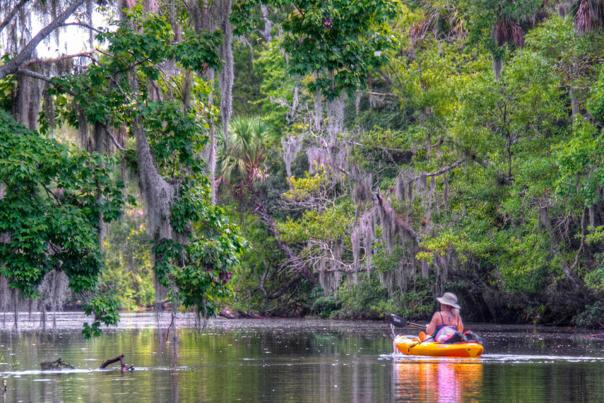 Kayak Spruce Creek Tour