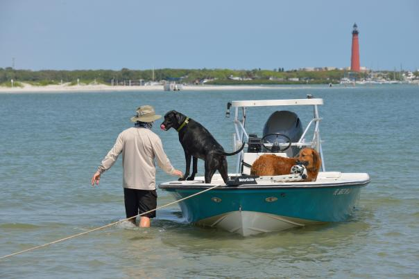 Two dogs aboard a boat in Ponce Inlet with a view of the lighthouse in the background